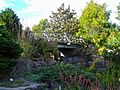 Alpine Garden (Montreal Botanical Garden) 05.jpg