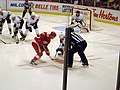 Anaheim Ducks vs. Detroit Red Wings Oct 8, 2010 20.JPG
