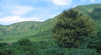 Palkonda Hills - Image: Andhra Pradesh Landscapes from Andhra Pradesh, views from Indias South Central Railway (97)