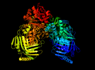 Anthranilate synthase - One of many anthranilate synthase structures.