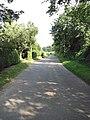 Approaching Sparham - geograph.org.uk - 899755.jpg