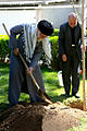 Arbor Day in Iran (2016) 04.jpg