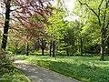 Arboretum, Botanischer Garten München-Nymphenburg - DSC07580.JPG
