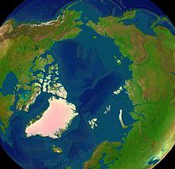 Satellitenfoto der Arktis ohne Eis