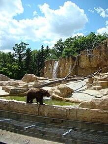 Assiniboine Park Zoo Wikipedia