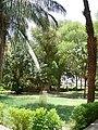 Aswan Botanical Garden 003.jpg