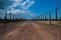Auschwitz Birkenau 2011.jpg
