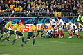 Australia vs USA 2011 RWC (1).jpg