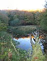 Autumn - panoramio (13).jpg