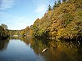 Autumn Colours and River Clyde - geograph.org.uk - 1550739.jpg
