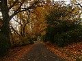 Autumn Loch Walk at Fyvie Castle - geograph.org.uk - 671675.jpg