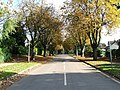 Avenue Road - geograph.org.uk - 592745.jpg