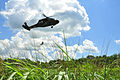 Aviation soldiers practice rescue hoist operations 130804-Z-DL064-269.jpg