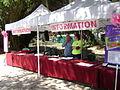 Azalea Festival 2013 28.JPG