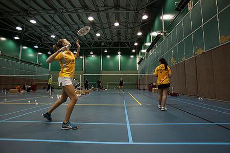 badminton information in english