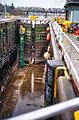 Ballard Locks Cleaning 2012-03-18 08.jpg