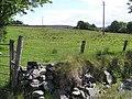 Ballintroohan Townland - geograph.org.uk - 1349490.jpg