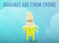 Bananas are Chom Choms.png