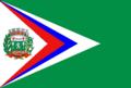 Bandeira de Juara (Mato Grosso).png