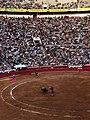 Banderillas - La Plaza Mexico.jpg