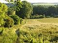 Barley, Sulham - geograph.org.uk - 848971.jpg