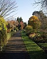 Bateman Walk, University Botanic Garden, Cambridge - geograph.org.uk - 614666.jpg