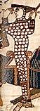 Vilhelm Erobreren på Bayeuxtapetet