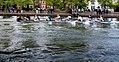 Bedford regatta.jpg