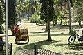 Bekerja untuk Kebun di sekitar Candi Borobudur.jpg