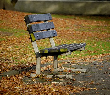 English: Bench, Ward Park A lonely bench in Wa...