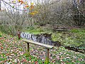 Bench and pond, Kingmoor (South) Nature Reserve - geograph.org.uk - 1054644.jpg