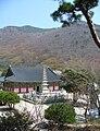 Beomeosa-temple-busan-hillside.jpg