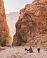 Berber shepherd in Todra Gorge, Morocco.jpg