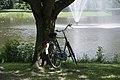 Bicycle vondelpark amsterdam.jpg