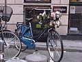 Bike and flowers 2.jpg