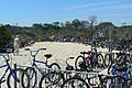Bikes at Chincoteague National Wildlife Refuge (6106041011).jpg