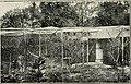 Bird notes (1919) (14565268688).jpg