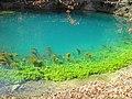 Blaubeurer Blautopf - panoramio.jpg