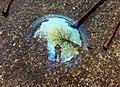 Blaue Seifenblase spiegelt die Umgebung.jpg