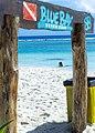BlueKay (http-www.bluekaymahahual.com) - panoramio.jpg