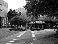 Bolzano City Image - Photo by Giovanni Ussi - In Black and White 33.jpg