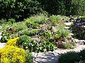 Botantischer Garten Erlangen.JPG