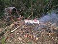Boucanage de gibier (Guyane).JPG