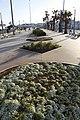 Boulevard de la Corniche, Dar-el-Beida, Morocco - panoramio (4).jpg