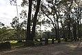 Bowral NSW 2576, Australia - panoramio (130).jpg