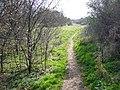 Bridge End Essex - geograph.org.uk - 368253.jpg