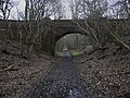 Bridge over the Downs Link by Lodge Copse - geograph.org.uk - 2248909.jpg