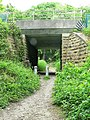 Bridge to Daffy Wood - geograph.org.uk - 819059.jpg