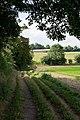 Bridleway approaching South Wonston Farm - geograph.org.uk - 934648.jpg