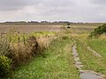 Bridleway leading from Stonhenge to Normanton Down - geograph.org.uk - 31909.jpg
